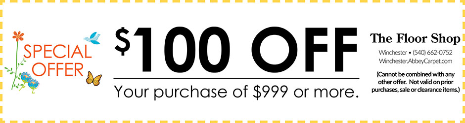 SPECIAL OFFER  $100 OFF  YOUR PURCHASE OF $999 OR MORE